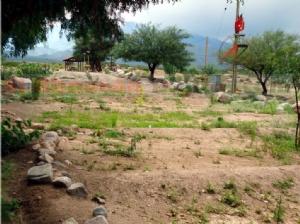Se suicidaron dos jóvenes en Palo Blanco